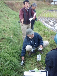 Radiation dose measurement in farmland